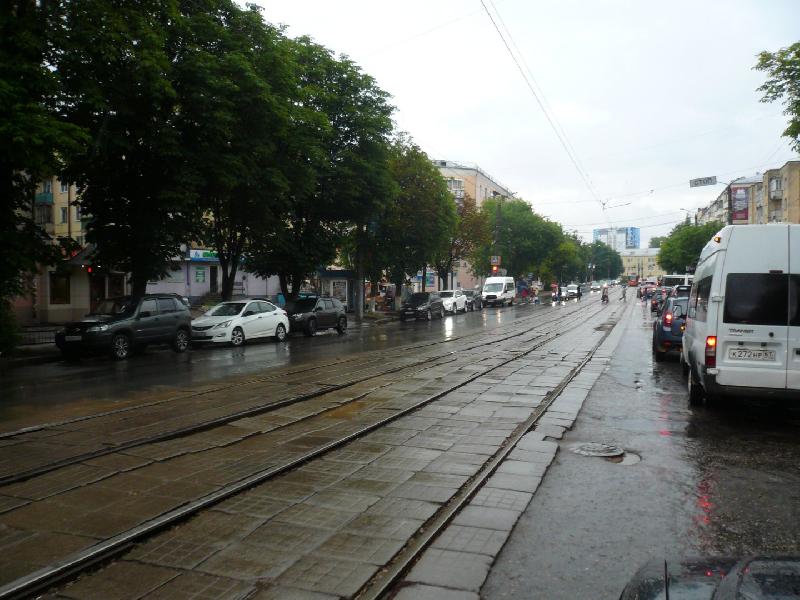 Улицу Николаева в Смоленске может украсить зеленая изгородь