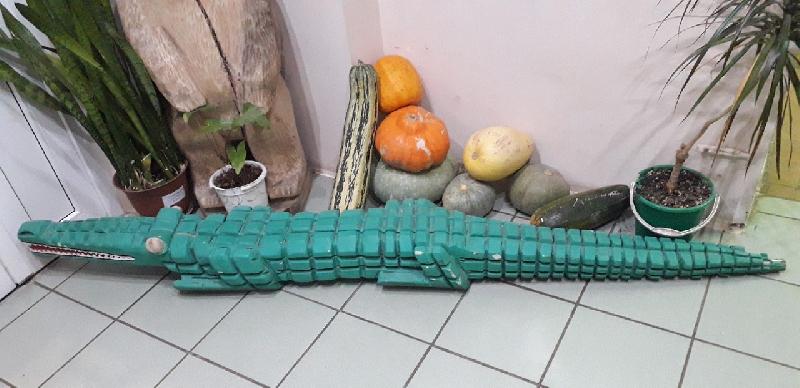 Смоленский зоопарк собрал почти 800 килограмм макулатуры и 574 килограмма фруктов