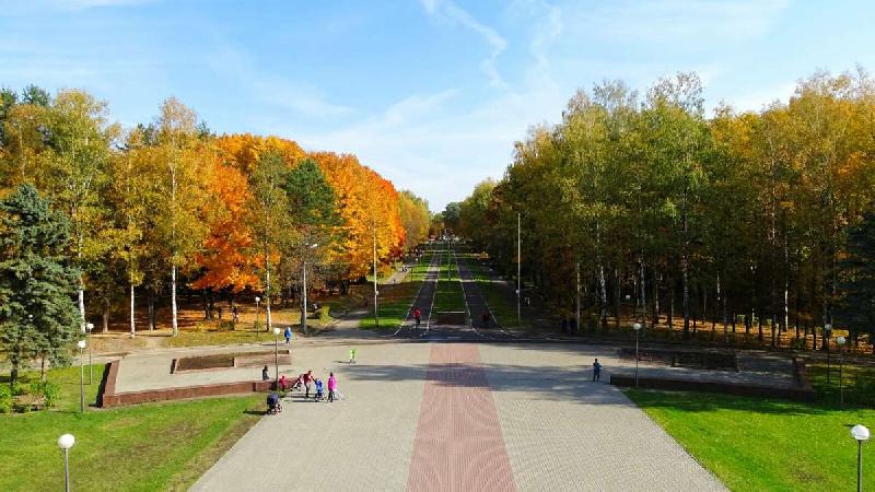 В Смоленске хотят обустроить площадку для выгула собак в Реадовском парке
