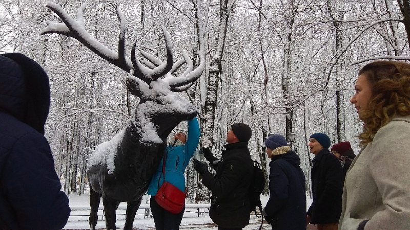 Откуда приезжали в Смоленск туристы на новогодних каникулах