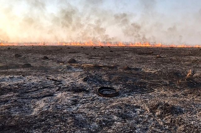 Более ста возгораний сухой травы зафиксировали за сутки на Смоленщине