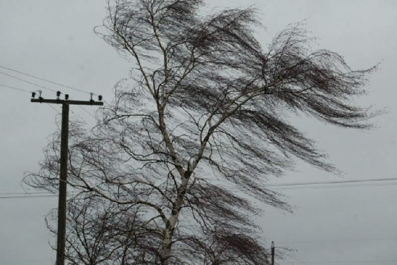 В Смоленской области ввели «желтый» уровень погодной опасности