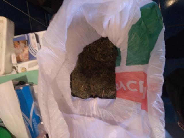 В Смоленске у драгдилера нашли более 1,5 кг наркотиков