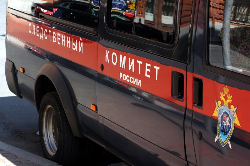 В Смоленской области 6-летняя девочка получила травмы на детской площадке