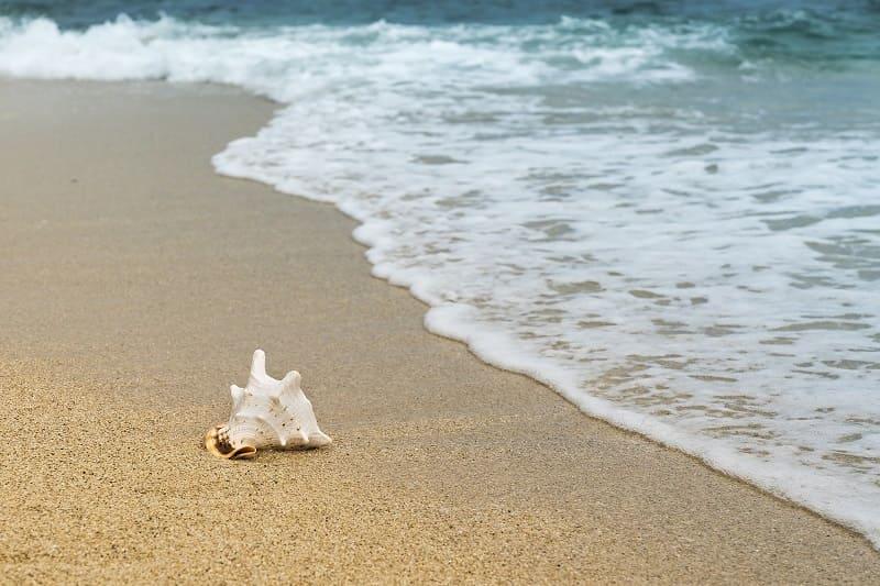 В этом году смоляне не отказались от пляжного отдыха