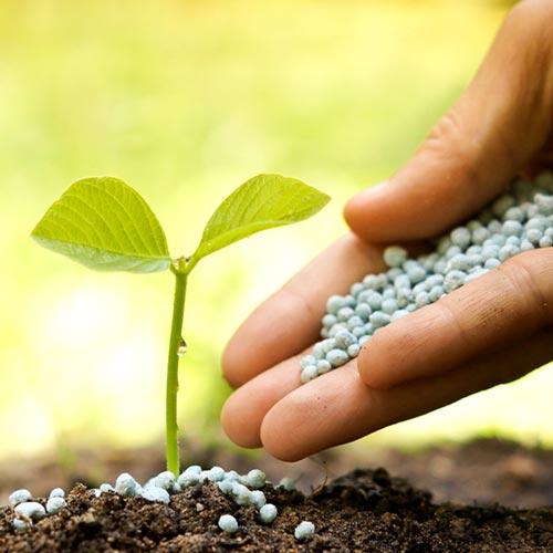 Сельское хозяйство Узбекистана поднимется на новый уровень