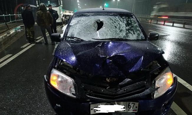 На трассе в Вяземском районе насмерть сбили пешехода