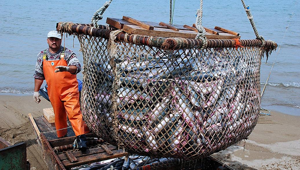 Кабмин расширяет меры господдержки рыбного промысла