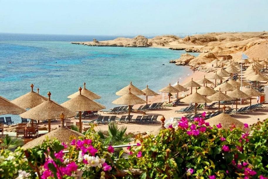 Выбираем горящий тур на египетские берега
